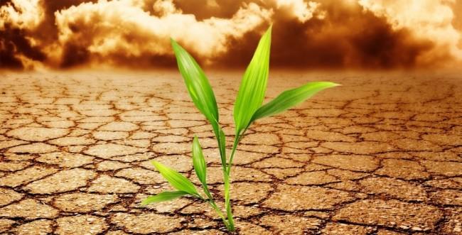 klima a 2000 es evekbol
